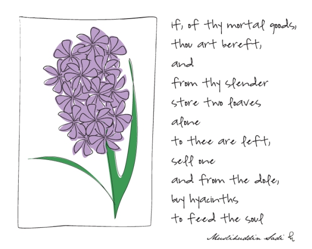 hyacinth8x10updated